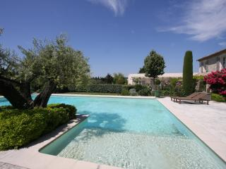 Beautiful Provencal Villa on Estate with Pool Near St Remy - Hortensia