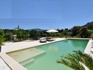 Family-Friendly Provence Villa with Guesthouse and Pool - Le Mas Oliviers, Eygalieres