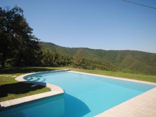 Charming Cottage Near Cortona  - Casa Viola