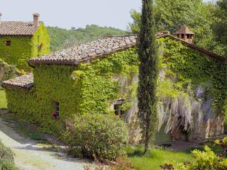 Farmhouse on Large Estate in Umbria  - Tenuta Regina - Nina, Montone