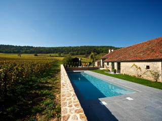 Burgundy Villa with Pool Near Beaune - Villa Meursault
