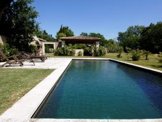 Large Provence Farmhouse with Pool within Walking Distance to St Remy - Laetetia