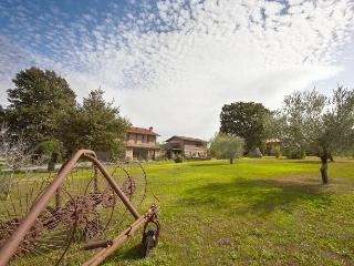 Two Apartments on Italian Working Farm - Alfina - Oro and Corallo