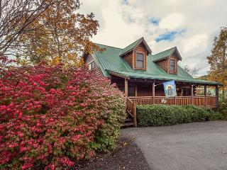 ERN853 - BEARY COZY, Pigeon Forge