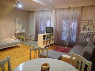 Stylish studio in the center of the city