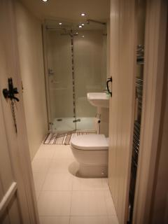 The downstairs shower-room