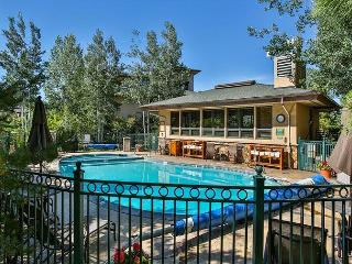 Best Condo Just One Block from Ski Area - Private Shuttle - 30% Off, Steamboat Springs