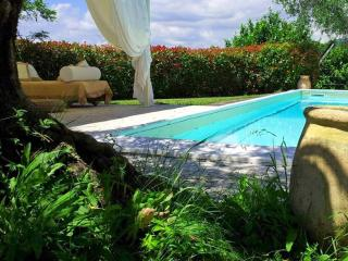 VILLA GOA 9 Pax, with Exclusive Pool, Free WiFi, BBQ near to beaches and 5 Terre
