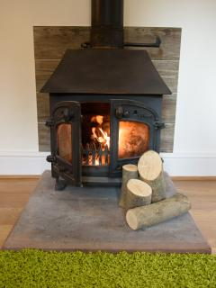 Log Burner in Mill Cottage
