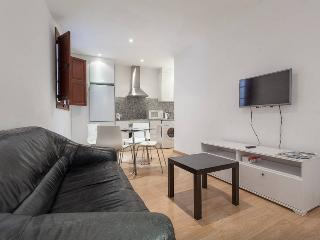 Great apartment in Plaza Mayor (2.4)