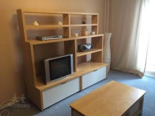 Apartment in Moscow #2119, Sochi