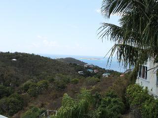 Palmy Daze Condo, Cruz Bay