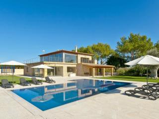Modern finca with pool surrounded by vineyards, Binissalem