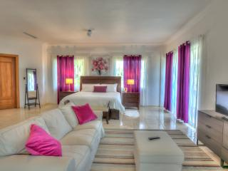 Villa close to the beach in Tortuga Bay - 5 Bedrooms - Tortuga A14, Punta Cana