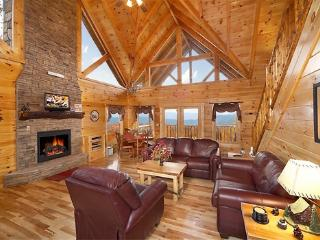 Fireplace in Living Room at 5 Star View