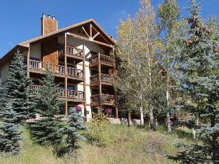 Great 2 Bedroom condo, hot tub, short walk to base area. 5th nt free!, Crested Butte