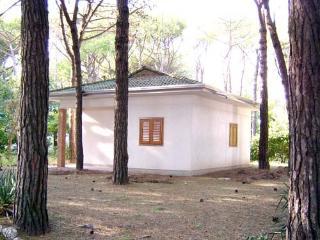 Bungalow Boscoverde 119