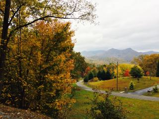 Mountain Cabin Getaway Dillard, GA Sleeps 12, Rabun Gap