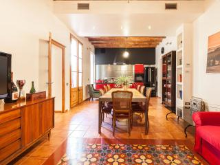 Luxury apartment with terrace near Las Ramblas