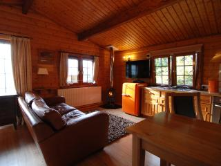 The Larches norwegian log chalet featuring The Hobbit stove