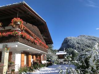Appartement skis aux pieds en rez de jardin, La Clusaz