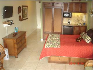 $84-$104-Oceanfront Resort/Oceanview Units244/256, Kapaa