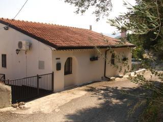 Detached country villa with private pool and garden with olive grove