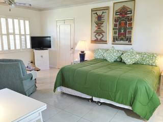 Wonderful Studio in Delray Beach  (Unit 18)