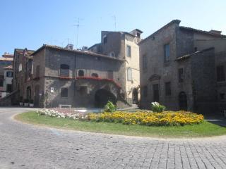Pretty loft - appartamento Viterbo - Bagnaia