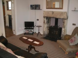 Sitting room with log burning stove, TV and DVD, wireless Bluetooth DAB hifi, single futon
