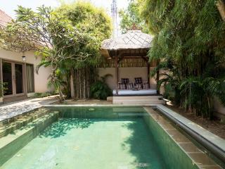 Villa Zenitude - 2 Bdrm Exclusive oasis Seminyak