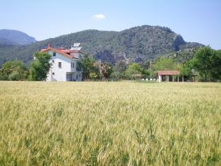 Apartment with large pool and country views, Dalyan
