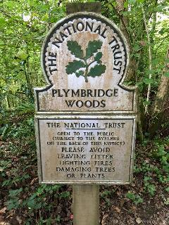 The flat is on the doorstep of National Trust Woodland