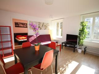 ZH Rodriguez - Stauffacher HITrental Apartment Zurich, Zúrich