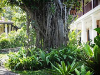 Amazing Oceanfront Family Villa