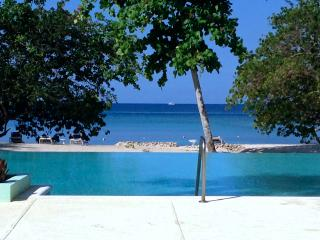 Butterfly House - Negril, Luxury Private Beach & Amazing Tropical Garden