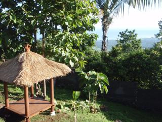 Villa Tiga Wasa - Modern, Private Pool, Views!, Lovina Beach