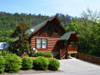 Cubby Bear  8211; located in Black Bear Ridge Resort