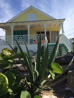 Palm Tree Cottage.