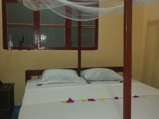 zanzibar dream lodge located on paje., Paje