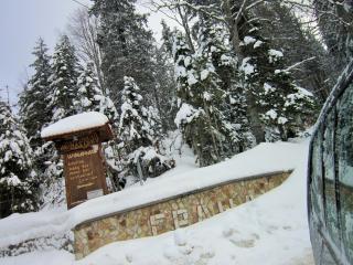 Deluxe Apartment in Monastery 3, Pamporovo Ski Rez