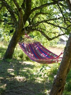 Relax in the hammock overlooking the river and Tamar bridge