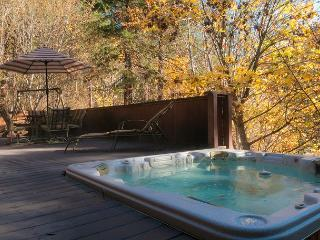 Bear Paw~A Cozy 2 bedroom, hot tub, 5 minute drive to Village of Leavenworth