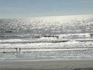 BEAUTIFUL DIRECT OCEANFRONT VIEWS NMB - No increase in rates during holidays!