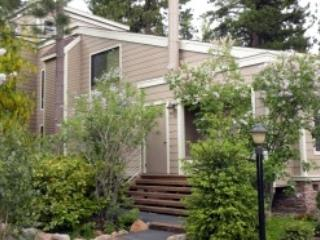 Forest Pines On My Mind ~ RA3596, Incline Village