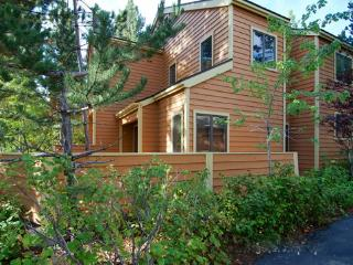 161 McCloud ~ RA45058, Incline Village