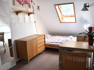 Cozy Studio with WiFi near University and Downtown, Praga