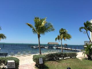Newly Renovated Unit In Tropical Paradise, Islamorada