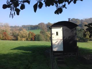 Hare Farm Shepherd's hut, Rye