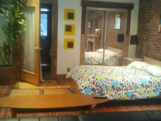 Beautiful studio/suite in brownstone by Cent. park, Maryknoll